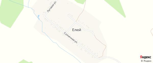 Луговая улица на карте деревни Елюя с номерами домов