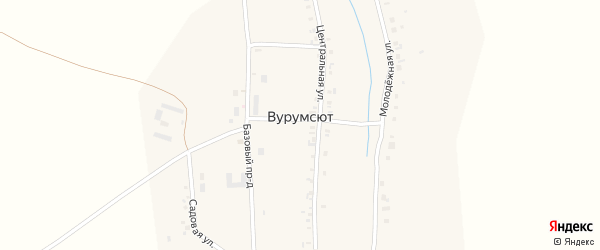 Центральная улица на карте деревни Вурумсюта с номерами домов