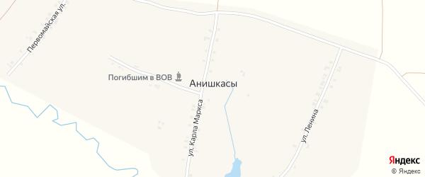 Односторонняя улица на карте деревни Анишкас с номерами домов
