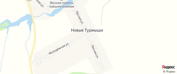 Лесная улица на карте деревни Новые Турмыши с номерами домов