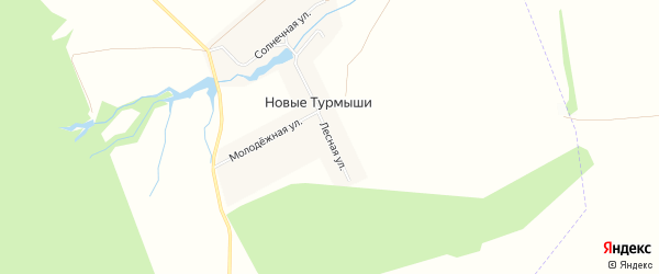 Карта деревни Новые Турмыши в Чувашии с улицами и номерами домов