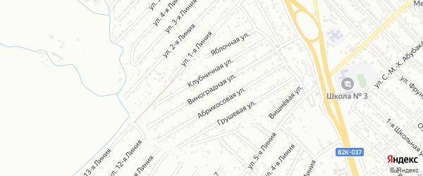 Виноградная улица на карте Дружбы СНТ с номерами домов