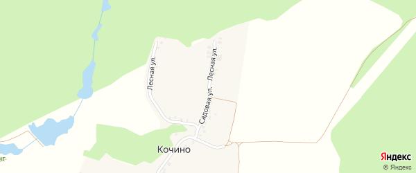 Лесная улица на карте деревни Кочино с номерами домов