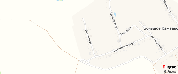 Луговая улица на карте деревни Большое Камаево с номерами домов