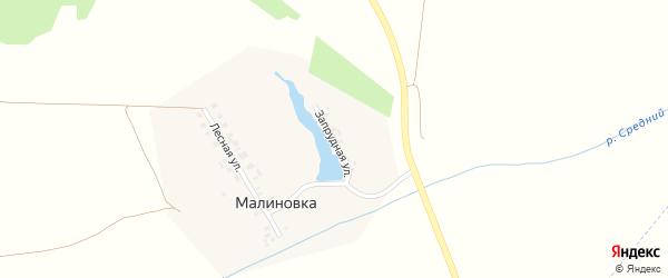 Запрудная улица на карте деревни Малиновки с номерами домов