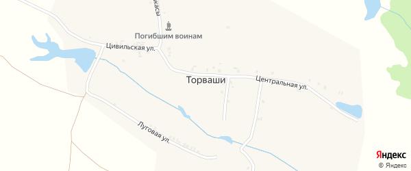 Центральная улица на карте деревни Торвашей с номерами домов