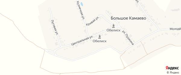 Центральная улица на карте деревни Большое Камаево с номерами домов