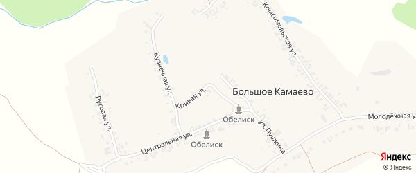 Кривая улица на карте деревни Большое Камаево с номерами домов