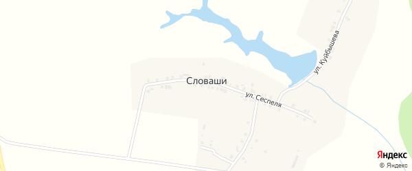 Улица Мичмана Павлова на карте деревни Словашей с номерами домов