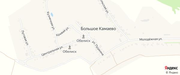 Улица Пушкина на карте деревни Большое Камаево с номерами домов