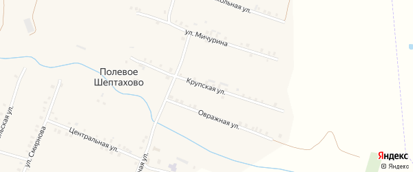 Крупская улица на карте деревни Полевое Шептахово с номерами домов