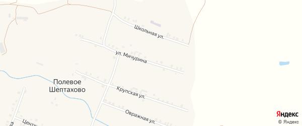 Улица Мичурина на карте деревни Полевое Шептахово с номерами домов