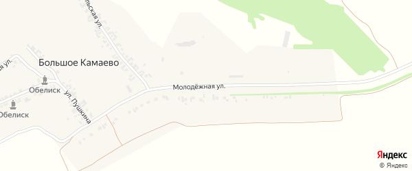 Молодежная улица на карте деревни Большое Камаево с номерами домов