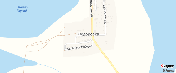 Электрический переулок на карте села Федоровки с номерами домов