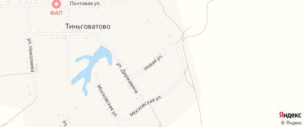 Новая улица на карте деревни Тиньговатово с номерами домов