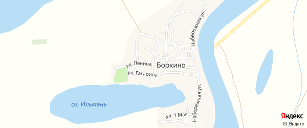 Улица Ленина на карте села Боркино с номерами домов