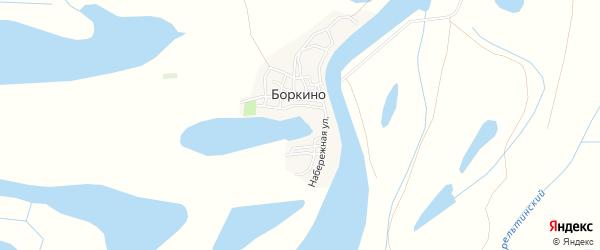 Карта села Боркино в Астраханской области с улицами и номерами домов