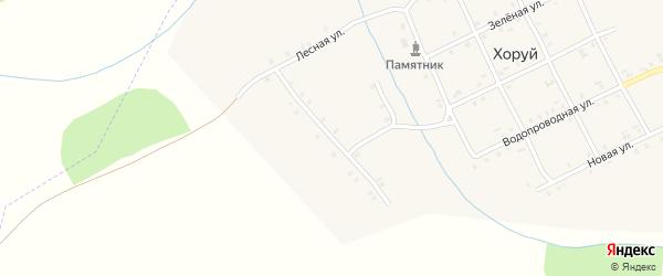 Лесная улица на карте деревни Хоруй с номерами домов