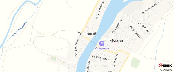 Карта Товарного поселка в Астраханской области с улицами и номерами домов