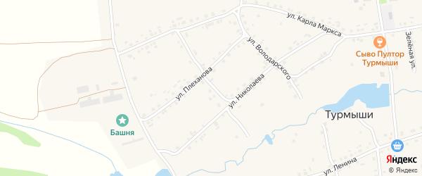 Улица Мичурина на карте села Турмыши с номерами домов