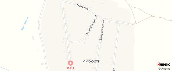 Молодежная улица на карте деревни Имбюрти с номерами домов