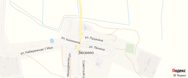 Улица Пушкина на карте села Зюзино с номерами домов