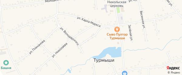 Переулок Володарского на карте села Турмыши с номерами домов