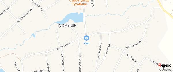 Улица Ленина на карте села Турмыши с номерами домов