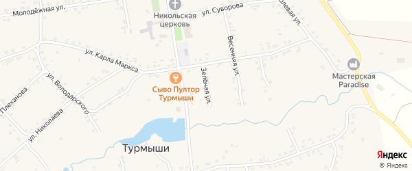 Зеленая улица на карте села Турмыши с номерами домов