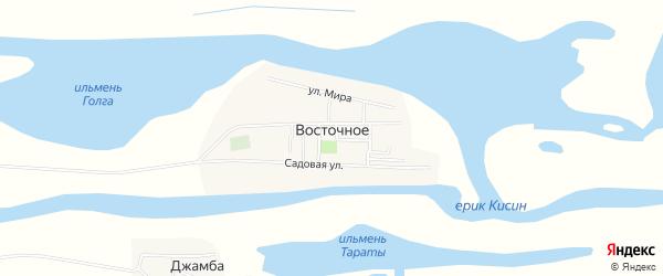 Карта Восточного села в Астраханской области с улицами и номерами домов
