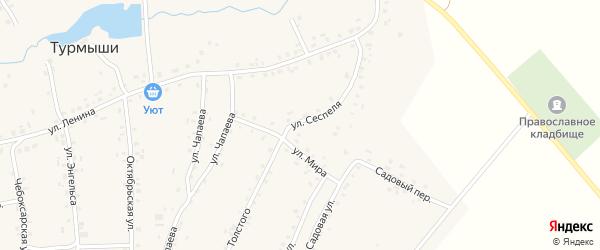 Улица Сеспеля на карте села Турмыши с номерами домов