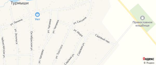 Улица Мира на карте села Турмыши с номерами домов