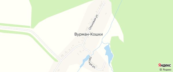 Ольховая улица на карте деревни Вурмана-Кошки с номерами домов