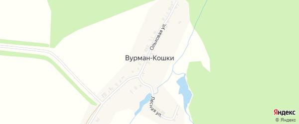 Новая улица на карте деревни Вурмана-Кошки с номерами домов