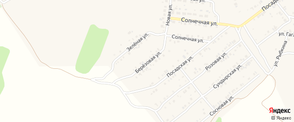 Березовая улица на карте Мариинского Посада с номерами домов