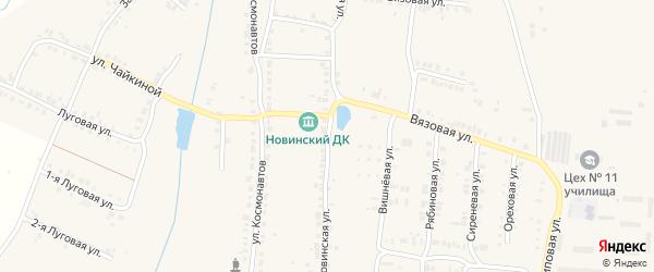 Новинская улица на карте Мариинского Посада с номерами домов