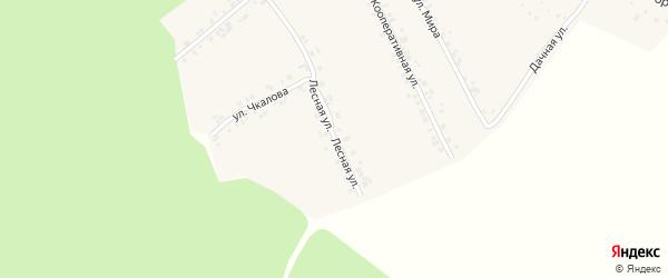 Лесная улица на карте деревни Ящерино с номерами домов