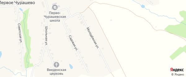 Молодежная улица на карте села Первое Чурашево с номерами домов