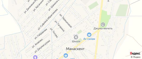 Улица И.Насрутдинова на карте села Манаскента с номерами домов