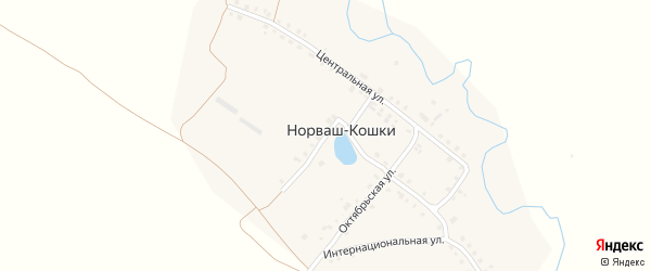 Озерная улица на карте деревни Норваша-Кошки с номерами домов