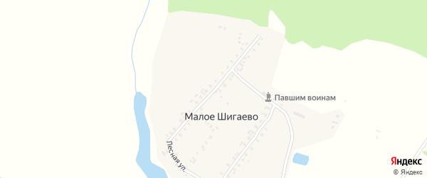 Лесная улица на карте деревни Малое Шигаево с номерами домов