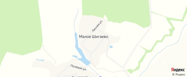 Карта деревни Малое Шигаево в Чувашии с улицами и номерами домов
