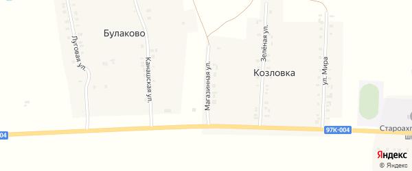 Магазинная улица на карте деревни Козловки с номерами домов