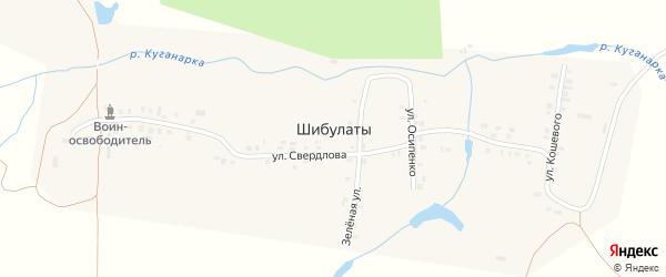 Зеленая улица на карте деревни Шибулаты с номерами домов