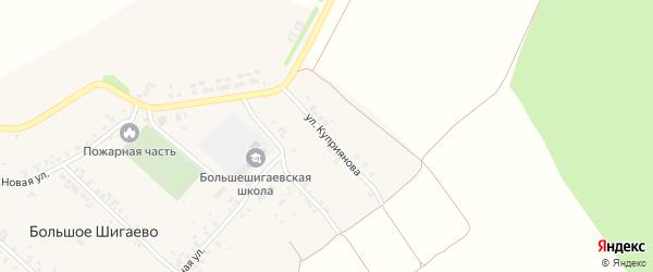 Улица Куприянова на карте деревни Большого Шигаево с номерами домов