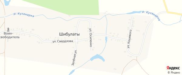 Улица П.Осипенко на карте деревни Шибулаты с номерами домов