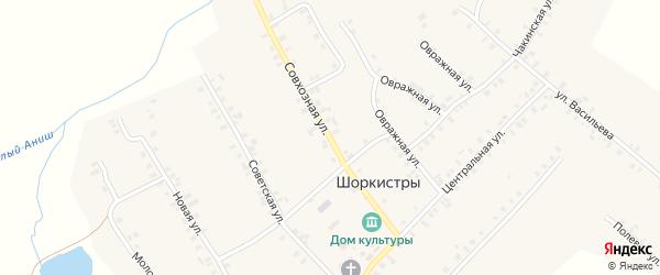 Совхозная улица на карте села Шоркистры с номерами домов