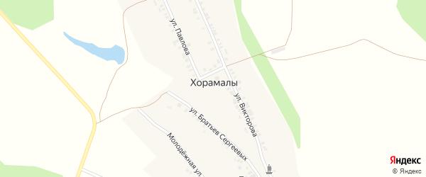 Абонентский ящик Ивана Викторова на карте деревни Хорамалы с номерами домов