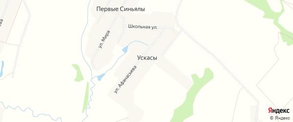 Карта деревни Ускасы в Чувашии с улицами и номерами домов