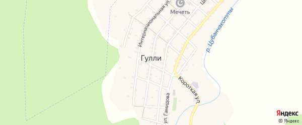 Центральная улица на карте села Гулли с номерами домов